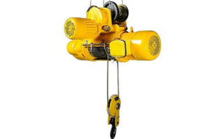 electric hook hoist for sale