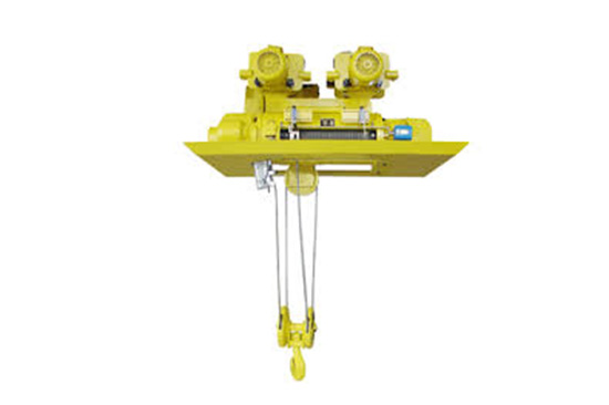 lightweight electric hoist for sale